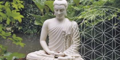 Yoga Karuna